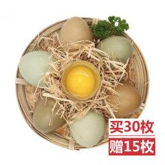 雄鸡一唱野鸡蛋营养组