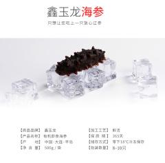 鑫玉龙单冻即食海参11-14