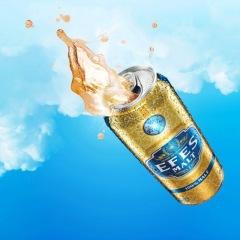 艾菲EFES 土耳其原装进口纯麦啤酒 500m l*24罐 整箱 黄色