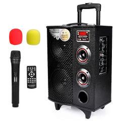 纽曼SM-898b户外广场舞音响 拉杆音箱 大功率锂电便携移动式蓝牙插卡扩音器