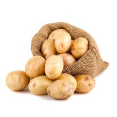 【新鲜蔬菜】山东荷兰土豆 大果约15个左右 5斤装(单果约150g)